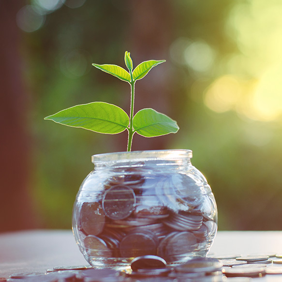 a jar of coins with a small plant spouting out of the coins